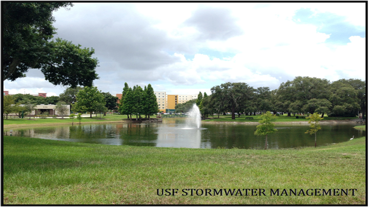 Stormwater management, pond on Tamp Campus