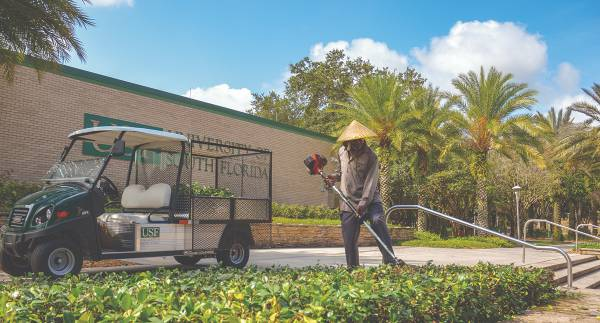 Grounds employee trimming hedges outside large USF logo signage.