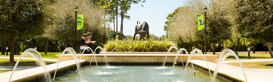 Fountains and bull statue at the Sarasota-Manatee campus of USF.