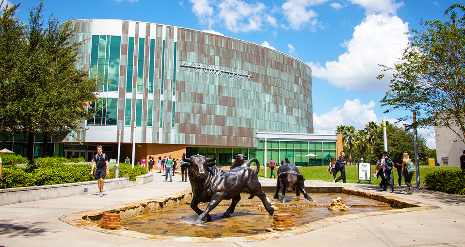 USF bull statue outside the Marshall Student Center on the Tampa campus.