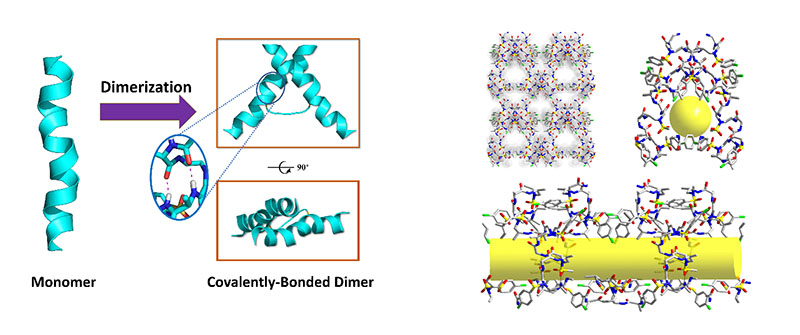 3D supramolecular network of dimer formed through self-assembly