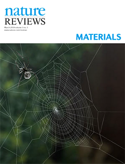 van der Vaart Nature Reviews Materials Cover