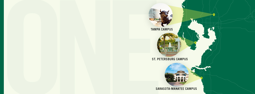 "Map of Florida, showing small photo inserts where each of 3 campuses is located, with ""ONE"" faded in background"