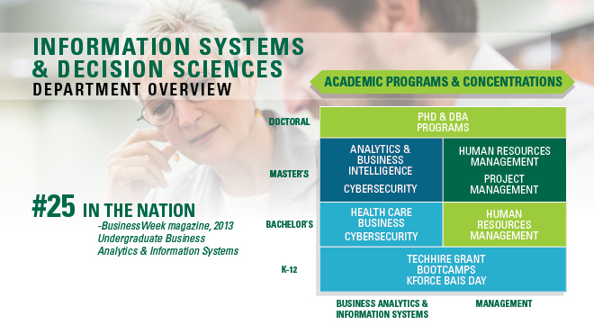 Information Systems and Decision Sciences overview