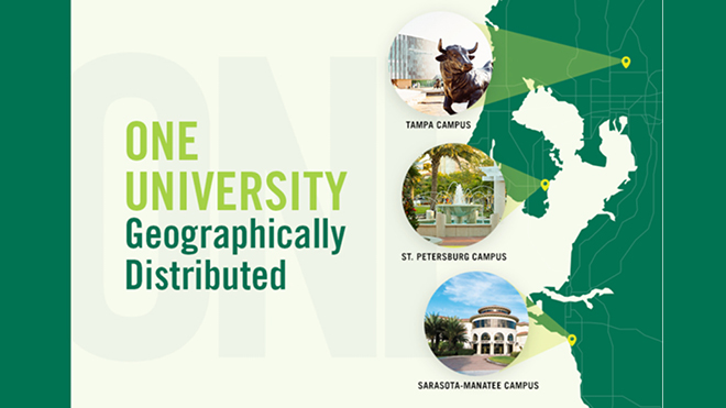 USF's Business Colleges: Embracing Consolidation's Opportunities