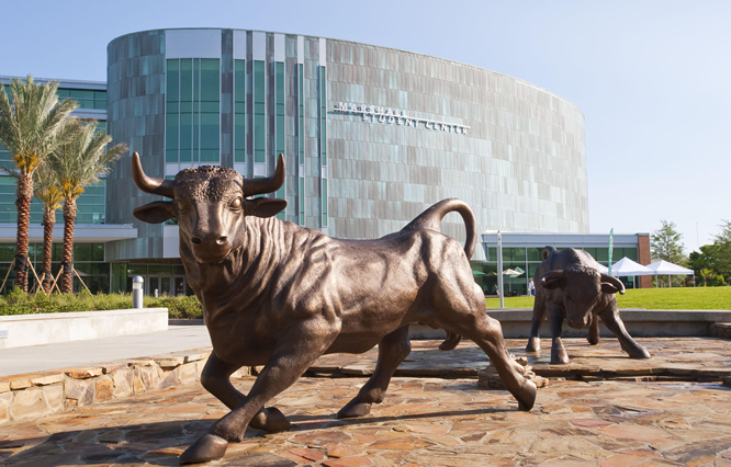 photo of the marshall student center and the bull statues leading up to the main entrance