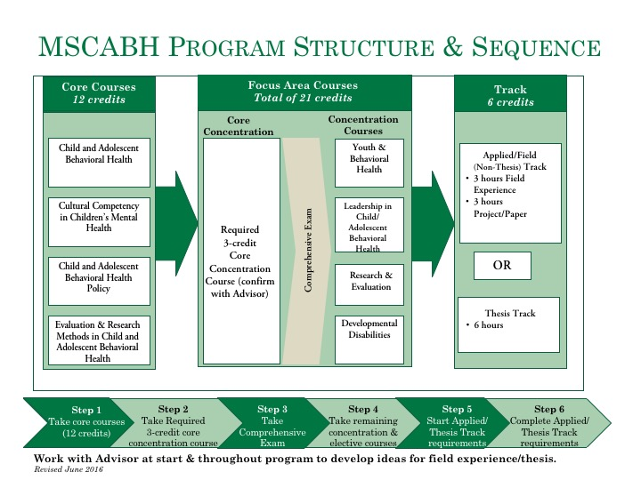 MSCABH Program Structure and Sequence