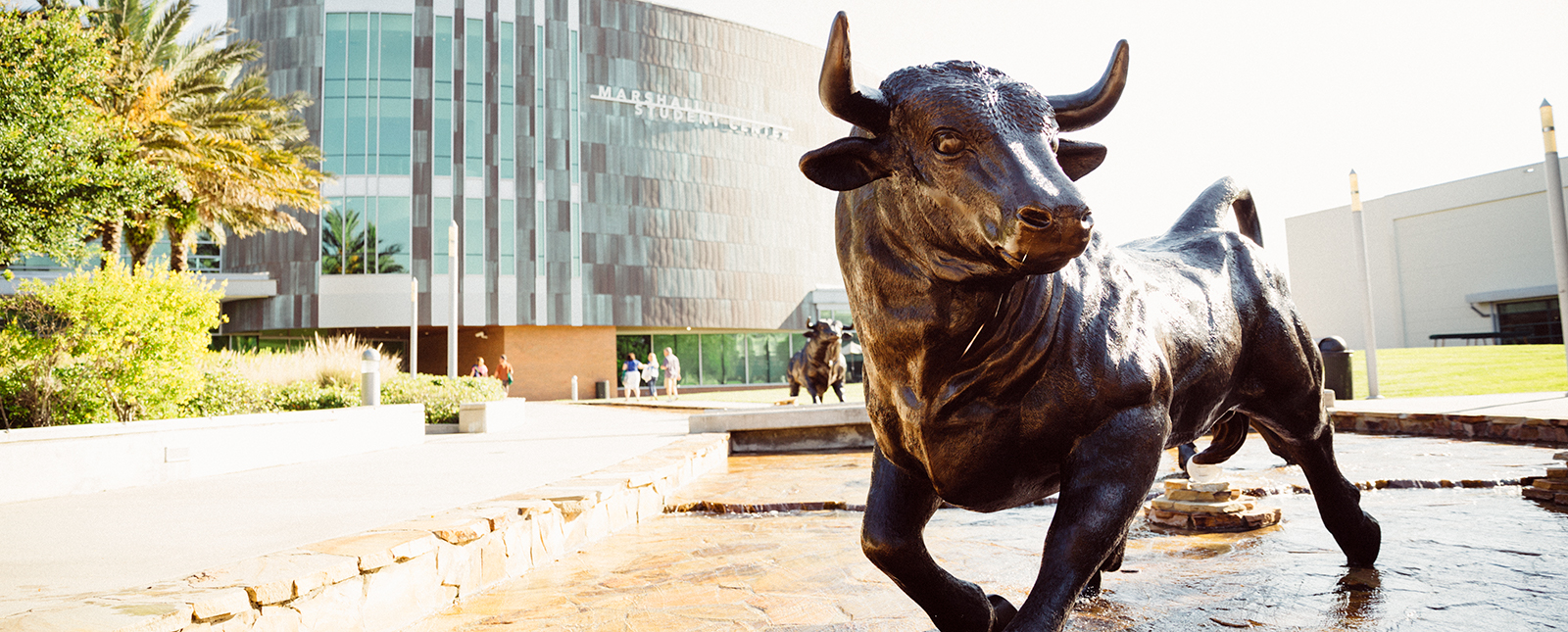 Rocky the Bull Statue in front of Marshall Center