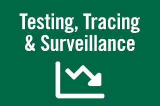 Testing, tracing and surveillance