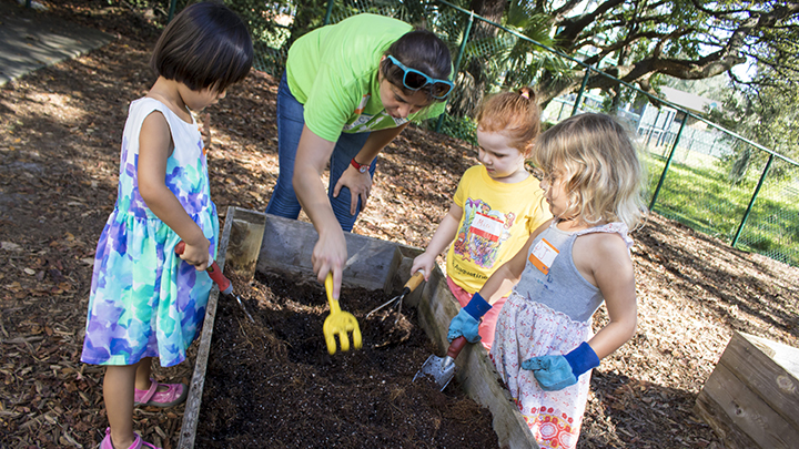 USF Preschool for Creative Learning students work with volunteer for gardening project