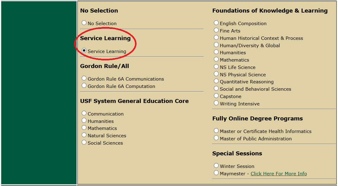 service-learning in OASIS