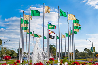 Flags on USF Tampa campus