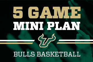 Basketball 5 Game Mini Plans Available Now