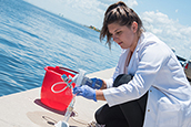 USF College of Marine Science student collecting water samples to test for red tide.