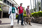 USF student-veterans on campus.