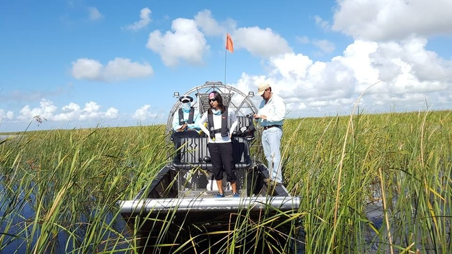 Field work in the everglades