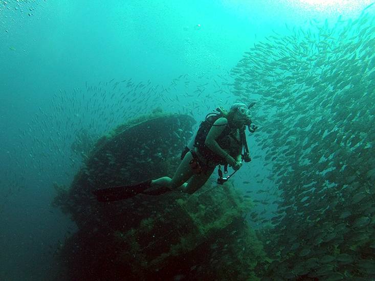 A Fish Ecology Lab member surveys an artificial reef on the West Florida Shelf. Photo courtesy of the Fish Ecology Lab.