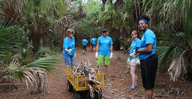 Participants from the Duke Energy Corporation helped to remove fallen trees and marine debris along the coastline during an Ocean Stewardship day.