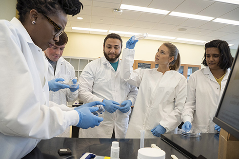 Biomedical engineering's first cohort of five students learn about the mechanical properties of biomaterials.