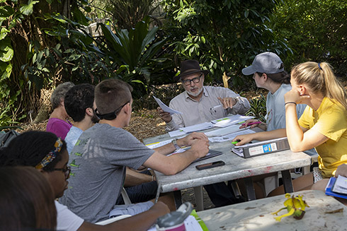 Religious studies students learn how to grow their own food at USF's Botanical Gardens.