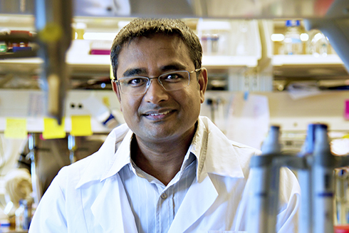Prahathees Eswara, PhD, an assistant professor in the University of South Florida's Department of Cell Biology, Microbiology, and Molecular Biology