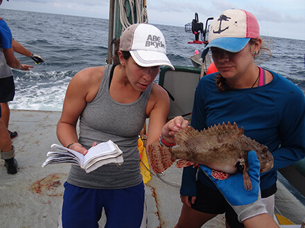 USF students Susan Snyder and Kristina Deak count fin spines to properly identify fish species.