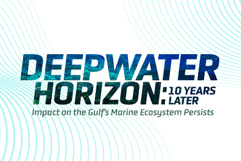 Text graphic: Deepwater Horizon: 10 years later. Impact on the Gulf's Marine Ecosystem Persists