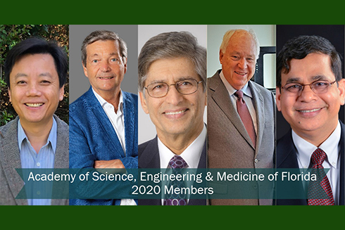 Five USF professors have been inducted as members of the Academy of Science, Engineering and Medicine of Florida.