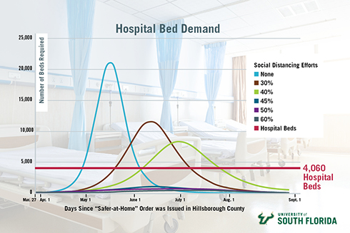A chart modeling the demand for hospital beds in Hillsborough County