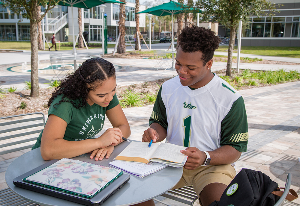 Students study outside at USF's Village