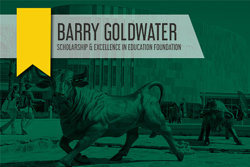 Goldwater Scholar graphic