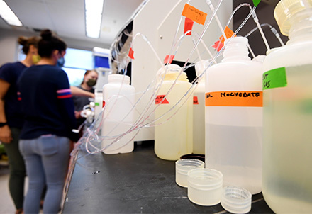 Water samples tested in a lab