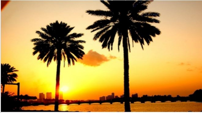 sunset Tampa