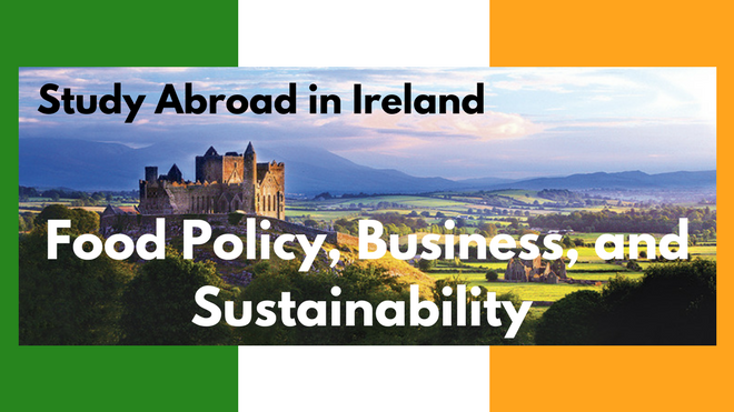 Study abroad in Ireland. Food Policy, Business, and Sustainability