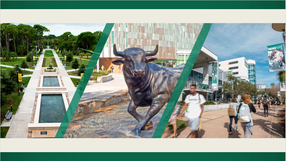 Three images together, one of each usf campus
