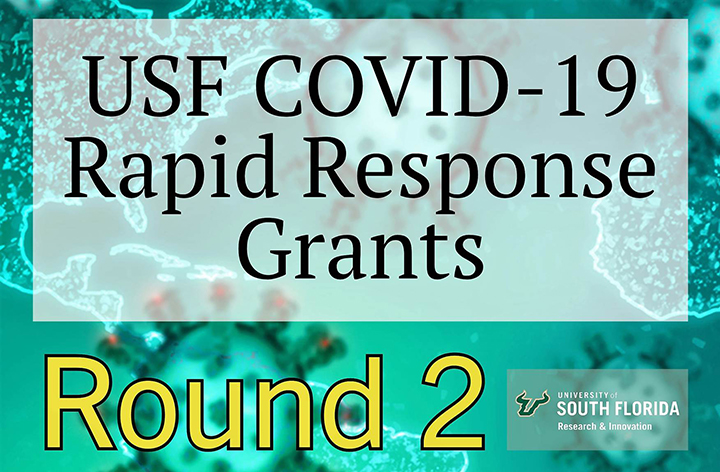COVID-19 Rapid Response Phase 2