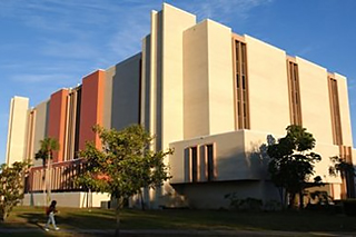 USF Library