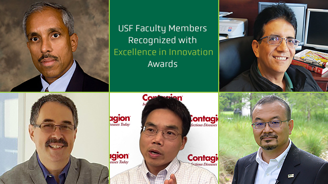 Five USF Faculty Members Recognized with Excellence in Innovation Awards