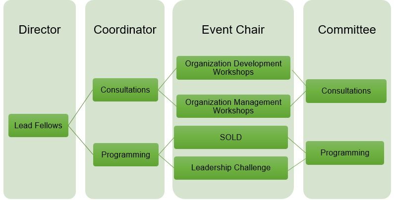Lead Fellows Structure