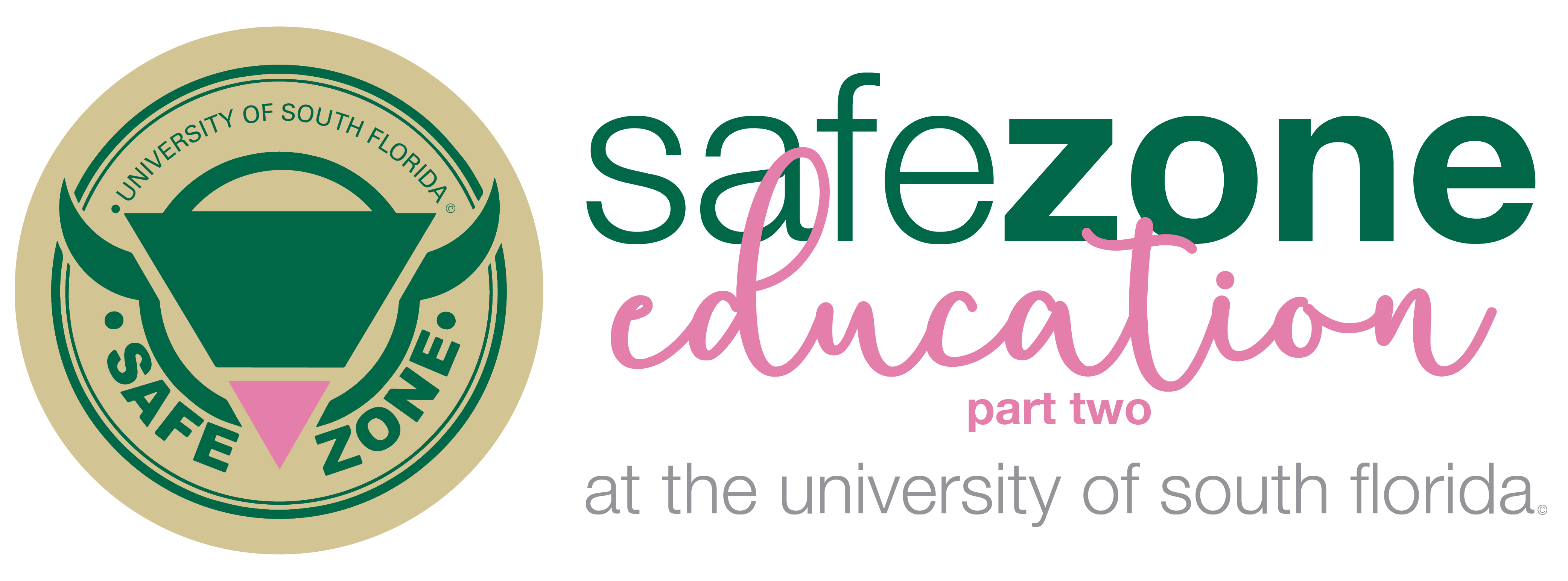 Safe Zone: Education Part Two