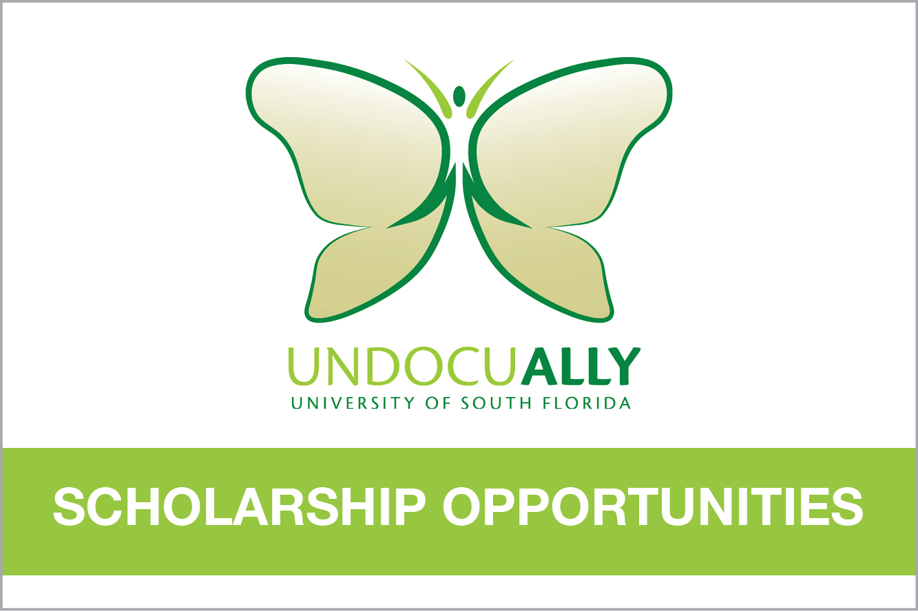 UndocuALLY Scholarship