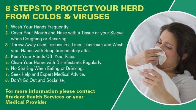 8 Steps to protect the herd from cold and viruses