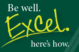be well. excel. graphic