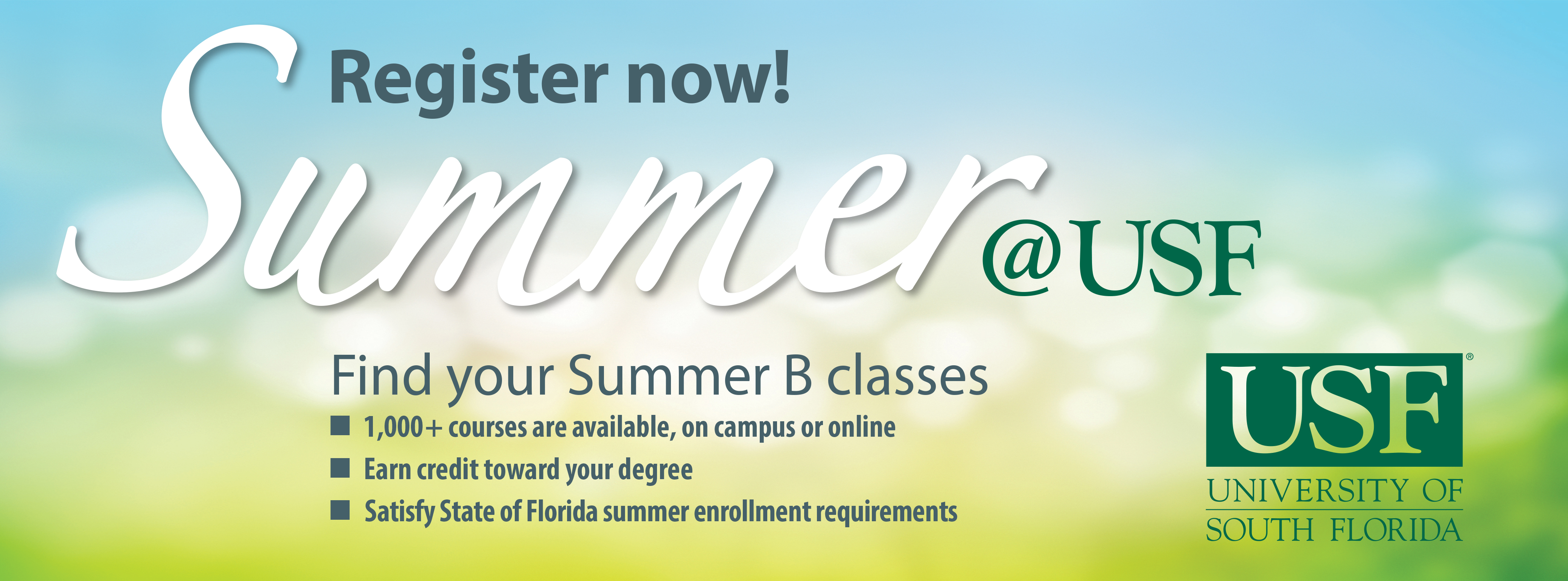 Summer at USF
