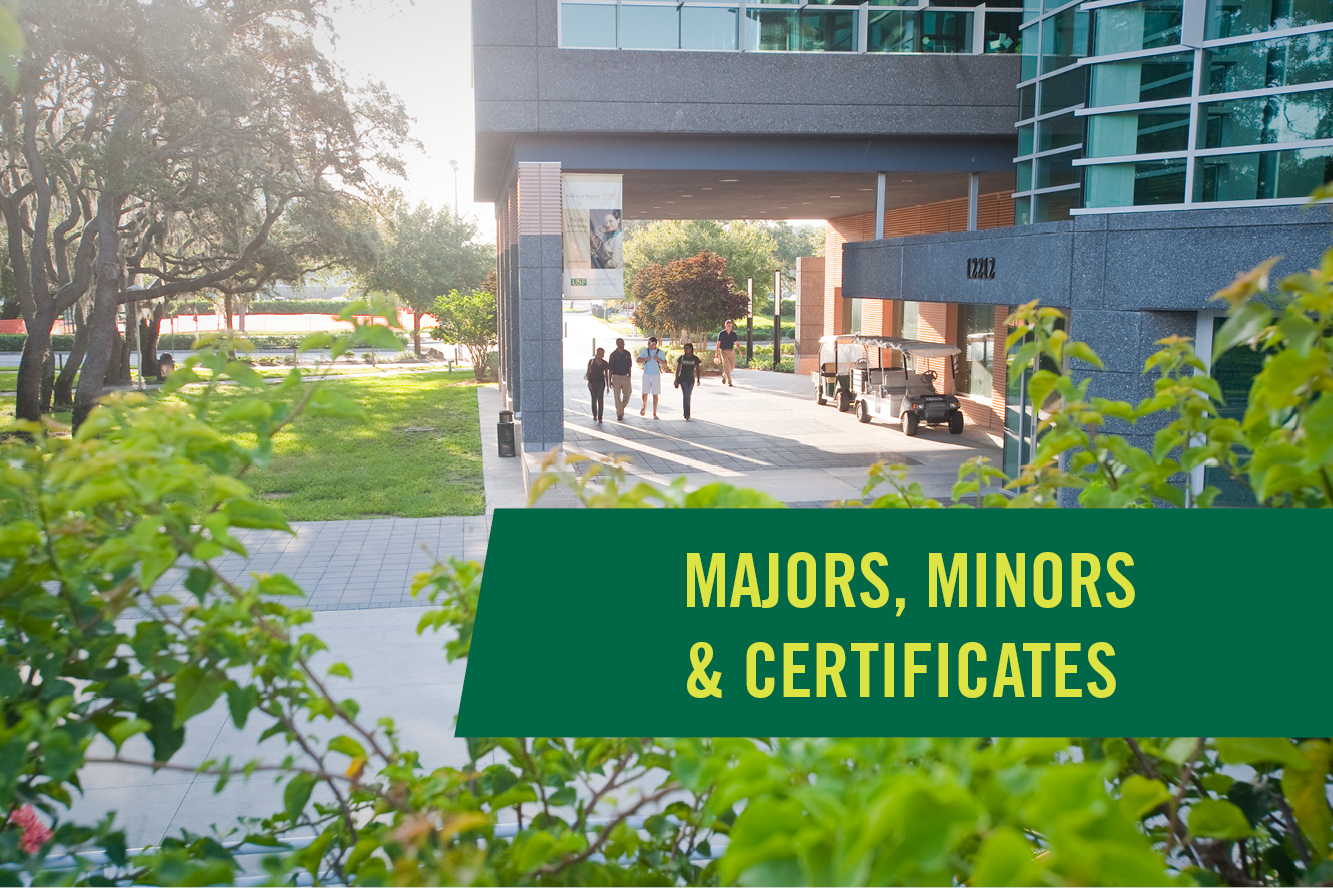 USF has a variety of Bachelor' degrees, minors, and certificates available