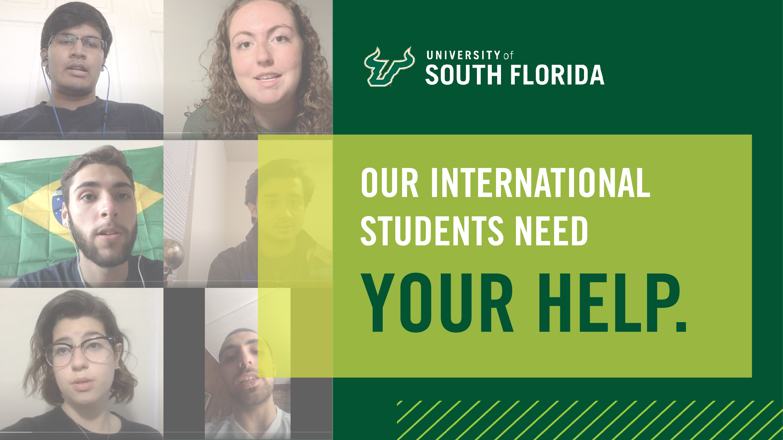 USF World international student support graphic