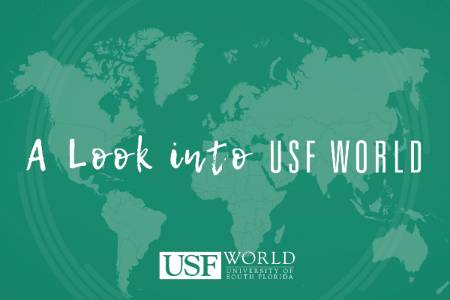 A Look into USF World