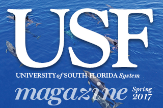Cover art for Spring 2017 USF Magazine.
