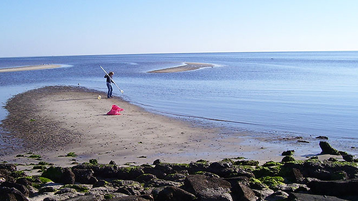 Asja Korakj conducts water research at Wakulla Beach, FL.
