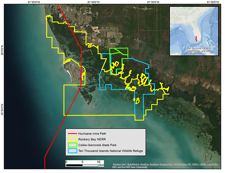 Southwest Florida, USA, showing the path of Hurricane Irma (red line in main graphic and in the inset showing the western Gulf of Mexico and the state of Florida; ArcGIS Basemap Source: ESRI). Local management jurisdiction boundaries are shown in different colors.